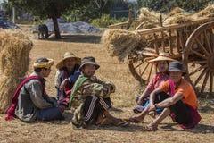 Mani dell'azienda agricola - lo Stato Shan - Myanmar Immagine Stock Libera da Diritti