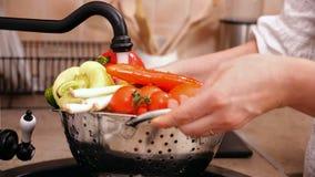 Mani della donna che lavano i lotti delle verdure al lavandino di cucina stock footage