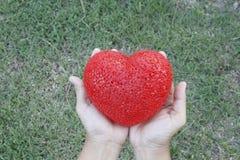 Mani della donna che tengono cuore sopra erba Fotografie Stock