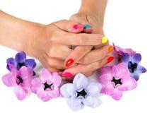 Mani della donna con i fiori luminosi dell'anemone e del manicure intorno Immagine Stock Libera da Diritti