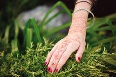 Mani della donna con il tatuaggio nero di mehndi Mani della ragazza indiana della sposa con i tatuaggi neri del hennè Modo L'Indi fotografia stock
