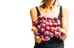 Mani della donna con l'uva rossa fresca fotografia stock libera da diritti