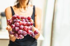 Mani della donna con l'uva rossa fresca fotografia stock
