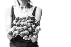 Mani della donna con l'uva rossa fresca fotografie stock