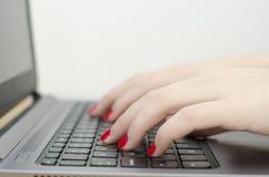 Mani della donna sulla tastiera, backdround bianco Fotografia Stock