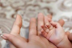 Mani della famiglia, mamma, papà, bambini, concetto di armonia della famiglia fotografie stock libere da diritti