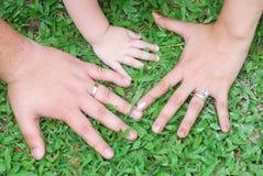 Mani della famiglia su erba Immagini Stock