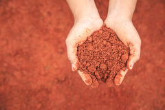 Mani della gente che tiene suolo per coltivare plantula Ecologia ed il gr fotografia stock