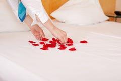 Mani della governante che sistemano i petali nella forma del cuore fotografia stock