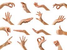 Mani delle donne che mostrano i gesti differenti fotografia stock