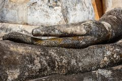 Mani di Buddha coperte in muschio, Wat Mahathat, parco storico di Sukhothai, Tailandia fotografia stock libera da diritti