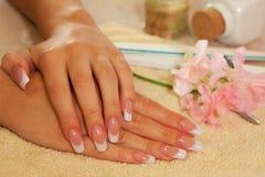 Mani di giovane donna con il manicure francese Immagini Stock