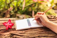 Mani di scrittura della ragazza Fotografia Stock Libera da Diritti