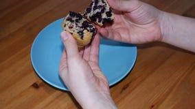 Mani di una donna che assaggia i muffin casalinghi con il mirtillo stock footage