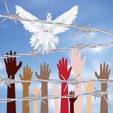 Mani dietro un filo spinato Immagine Stock Libera da Diritti