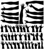 Mani e braccia Fotografie Stock Libere da Diritti