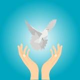 Mani e colomba royalty illustrazione gratis