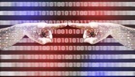 Mani e numeri binari Immagine Stock Libera da Diritti