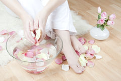 Mani e piedi della donna con i petali Immagine Stock Libera da Diritti