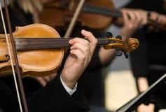 Mani e violini Fotografia Stock