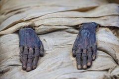 Mani egiziane della mummia Fotografia Stock