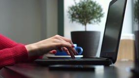 Mani femminili che lavorano ad un computer portatile in un caffè archivi video