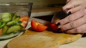 Mani femminili che tagliano pomodoro video d archivio