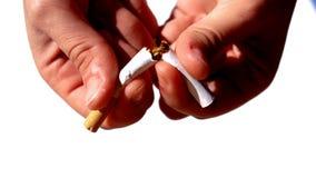 Mani femminili che tagliano una sigaretta a metà stock footage