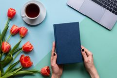 Mani femminili che tengono libro su fondo blu Fondo con caffè, il computer portatile ed i fiori immagine stock