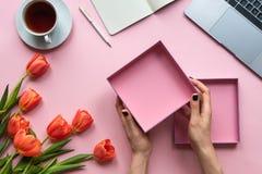 Mani femminili che tengono scatola vuota aperta su fondo rosa Fondo con la tazza di tè, del computer portatile e dei fiori fotografia stock