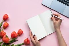 Mani femminili che tengono taccuino Fondo rosa con il computer portatile ed i tulipani Copi lo spazio immagini stock