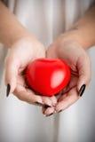 Mani femminili che tengono un cuore Fotografie Stock