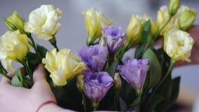 Mani femminili con i bei fiori - eustoms di giallo e di viola da da vicino fotografie stock libere da diritti