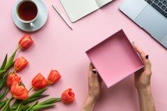 Mani femminili con la scatola vuota aperta su fondo rosa Fondo con caffè, il computer portatile ed i tulipani immagine stock