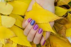 Mani femminili con progettazione porpora del chiodo di scintillio Fotografie Stock Libere da Diritti