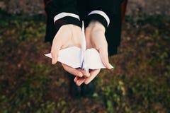 Mani femminili della ragazza che tengono l'uccello della gru della carta di origami con fondo di erba, uniforme scolastico del gi fotografia stock
