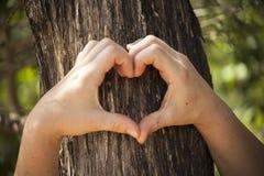 Mani femminili a forma di del cuore Fotografie Stock Libere da Diritti