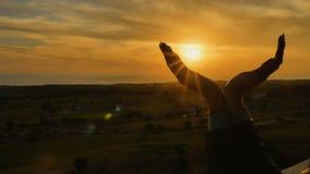 Mani femminili nella forma di uccello contro il tramonto video d archivio