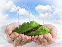 Mani maschii che tengono una collina verde con le turbine di vento Immagini Stock