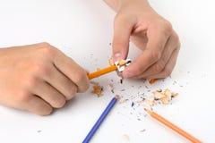 Mani mentre affilando i pastelli Fotografie Stock Libere da Diritti