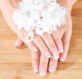 Mani molli femminili con il bello manicure francese fotografia stock