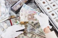 Mani nei guanti bianchi con una zloty del polacco e della lente d'ingrandimento Fotografie Stock Libere da Diritti