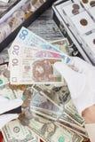 Mani nei guanti bianchi con una zloty del polacco e della lente d'ingrandimento Immagine Stock Libera da Diritti
