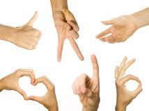 Mani nell'azione Fotografie Stock Libere da Diritti