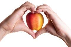 Mani nella mela concludente della forma del cuore dentro Fotografia Stock