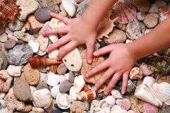 Mani sul seashell e sulle pietre Fotografia Stock Libera da Diritti