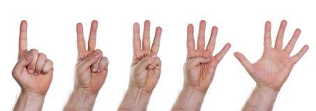 Mani umane che contano i numeri da uno a cinque Immagini Stock