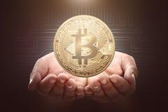 Mani umane che tengono bitcoin dorato Immagini Stock Libere da Diritti
