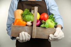 Mani umane che tengono scatola di legno con differenti frutta e verdure Fotografia Stock