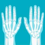 Mani umane dei giunti del fumetto messe Vettore illustrazione vettoriale
